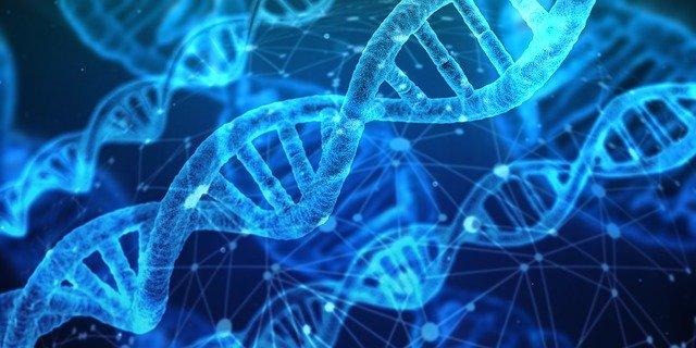 Full Form of DNA